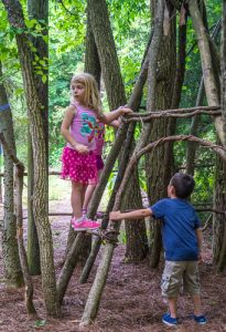 Preschool Forest Play