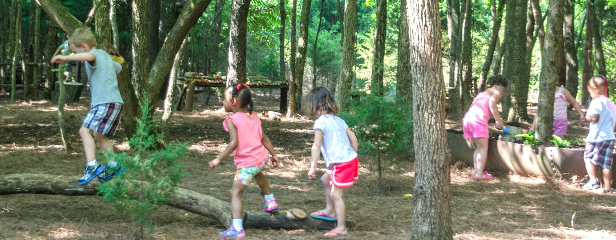 Nature Play
